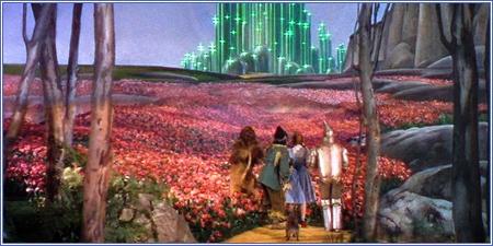 Llegando a la Ciudad Esmeralda
