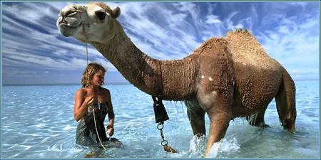 La verdadera Robyn Davidson llegando al océano