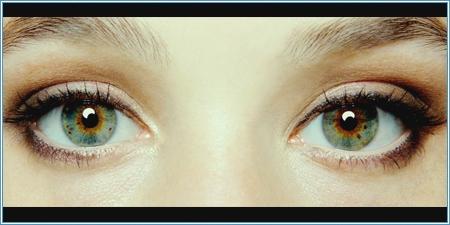 Los fascinantes ojos de Sofi