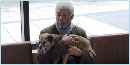 Morgan Freeman es Alex Carver