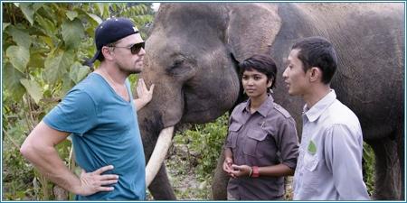 Leonardo DiCaprio y la conservacionista indonesia Farwiza Farhan